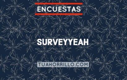 SurveYeah completa encuestas online y gana dinero